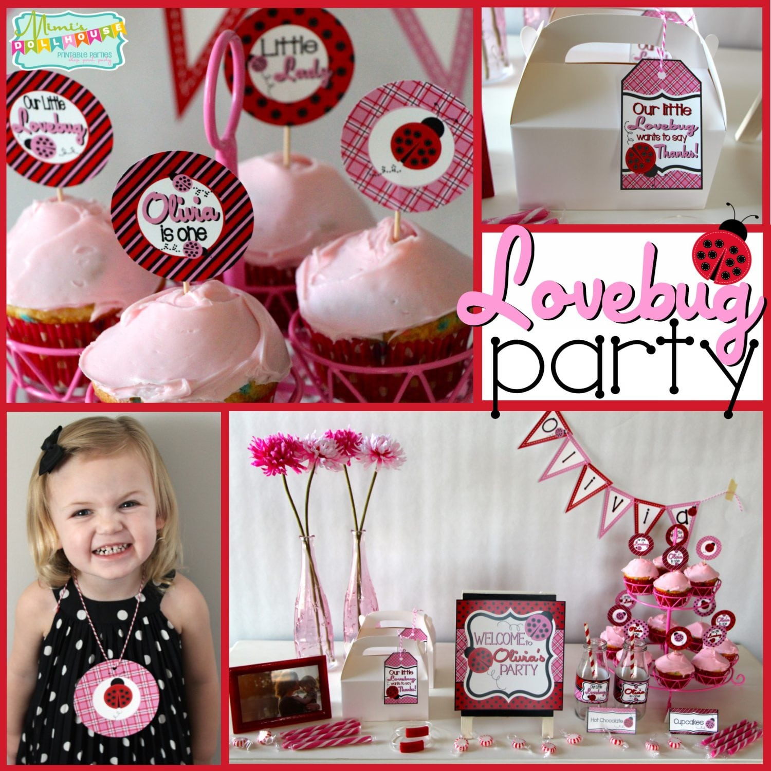 Ladybug Party: A Little Lovebug Valentine Party
